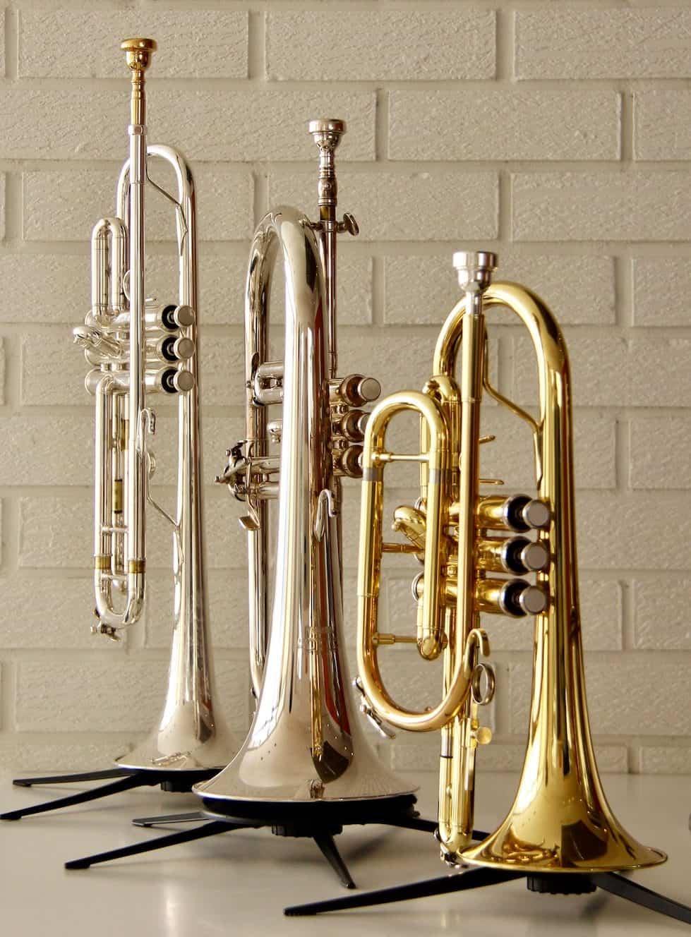 Trumpet, Flugelhorn, Cornet