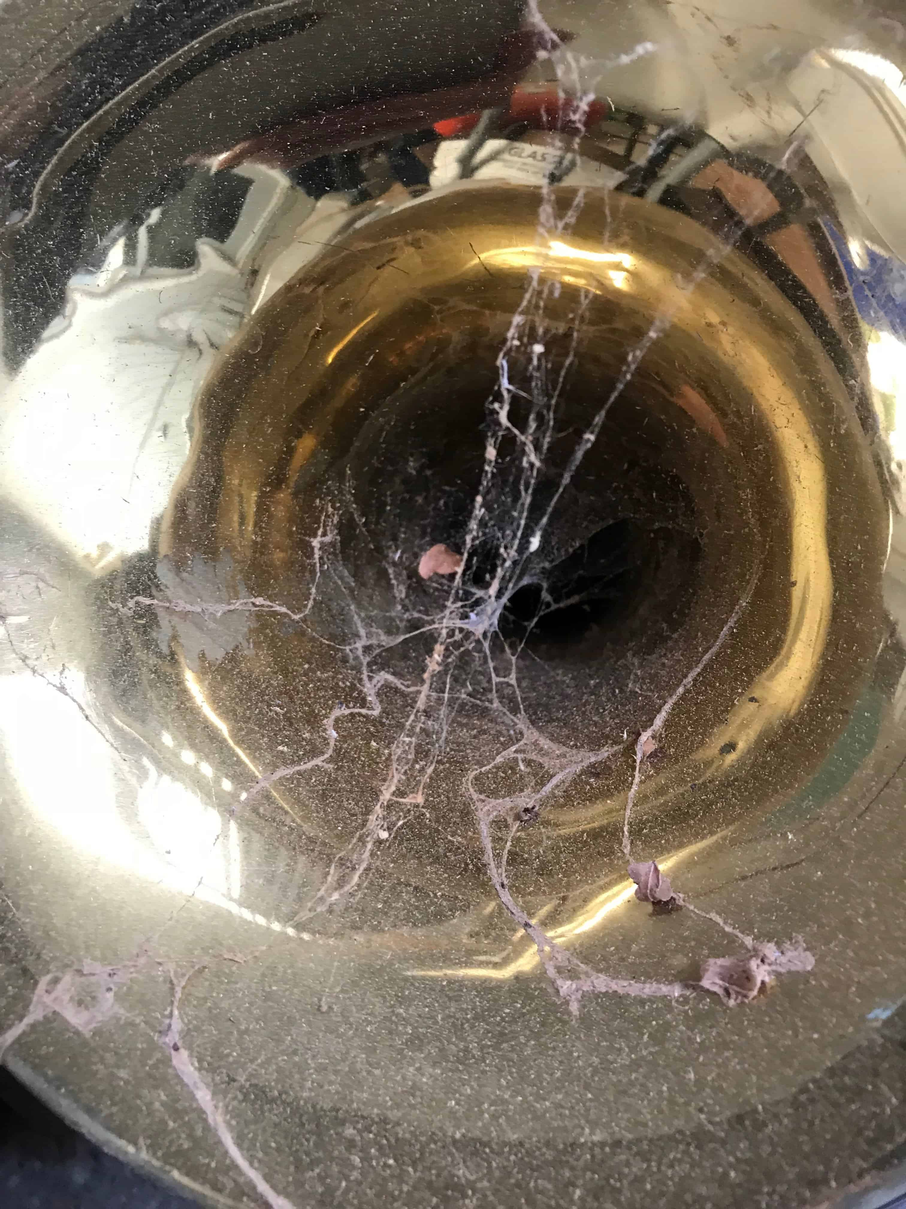 Dusty Trumpet - How to Clean a Trumpet