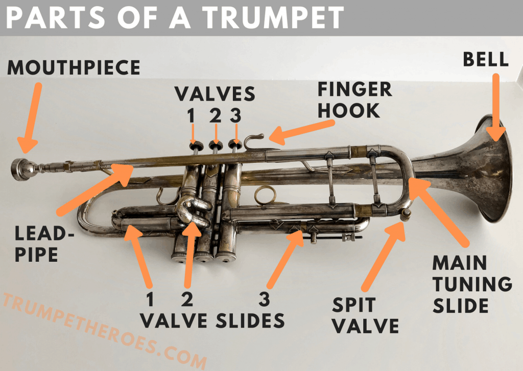 Parts of a Trumpet - Labelled Photo